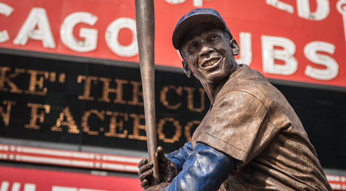 The Year of the Cub and a Year for Mr. Cub